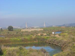 Bortom marsklandet syns bron, som är förbindelselänk mellan Portugal och Spanien