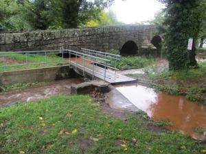 Vattnet har stigit ganska mycket under de intensiva regnen