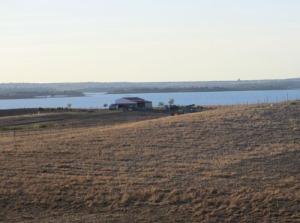 I den här lilla bondgården nära sjön finns både hundar, katter, hästar, kor, höns och säkert mycket mer