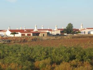 En liten vy över byn. Lägg märke till de speciella portugisiska skorstenarna!