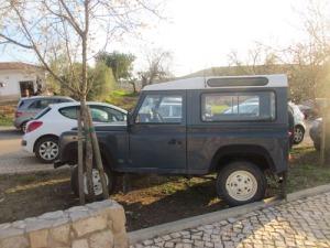Den här bilisten har parkerat i en plantering mellan mandelträd.