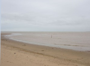 Vattnet i Guadalquivirs mynning är nästan lika brunt som sanden.