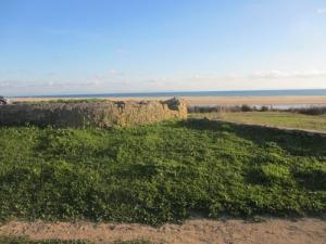 Långt utanför utgrävningsområdet finns spår från forna tider
