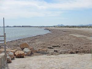 """Den här landremsan mellan Medelhavet och Mar Menor går ut mot La Manga, som syns i bakgrunden. Man hade velat bygga en väg här, men """"de gröna"""" motsatte sig det p g a att det bl. a skulle störa fågellivet"""