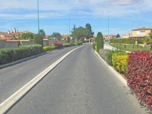 Gatorna i de mindre orterna här nere är ofta kantade med buskar i olika kulörer