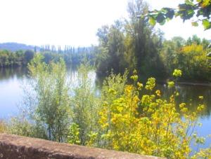 """Dordognefloden vid de """"vackraste franska byarna"""""""