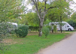 Det finns uppvuxen grönska överallt på campingen
